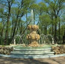 Реконструкция и капитальный ремонт с элементами воссоздания ансамбля-памятника «Летний сад»